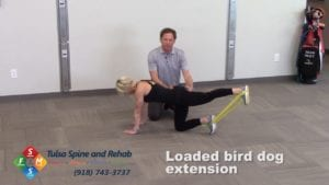 Fit Tip: Loaded Bird Dog Extension
